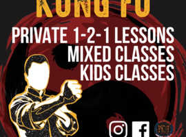 Free Wing Chun Kung Fu lesson