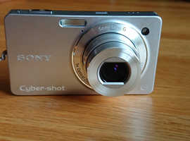 Sony DSC-WX1 Digital Camera