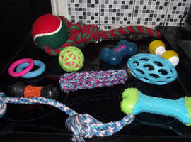 Dog Chew Toy for Sale