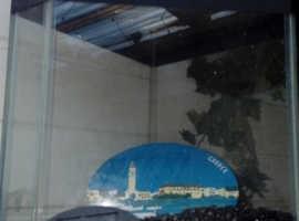 Triangle fish tank