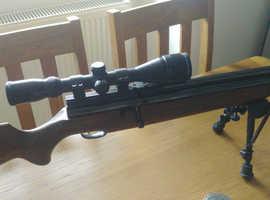 Webley Raider 2 shot