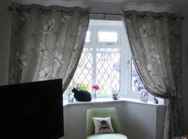 Gorgeous Next Curtains