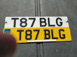 Cherished number T 87 BLG on retention document
