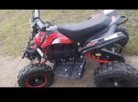 36v 800w quad