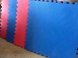 Gym Interlocking training mats