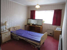 Free electric   hospital bed, v good condition