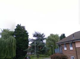 Staines, Surrey to Worthing / Brighton