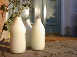 doorstep milk round  for sale oppertunity to run/own your own buissness 10,000 o.on.o.plus ford transit milk float