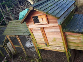 Chickens and coop for sale