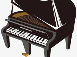 Junior Piano lessons