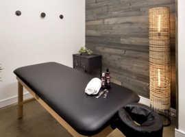 Professional Massage Therapist