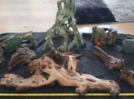 bog wood and hides