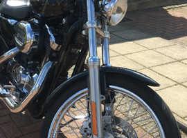Harley Davidson Sportster xl1200c '05