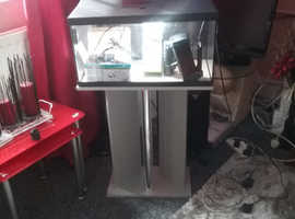 Fishtank 2ft by 1ft on stand