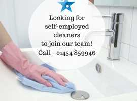Domestic Cleaner - Self Employed
