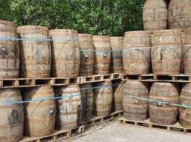 Solid oak barrels and barrel planter pots
