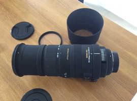 sigma 150-500 nikon fit lens