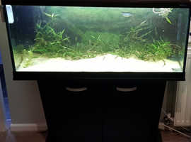 FLUVAL 180 LTR 1 METER LONG AQUARIUM/FISH TANK + CABINET & NEW LED's