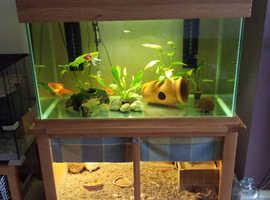 Aquaoak fish tank 340l
