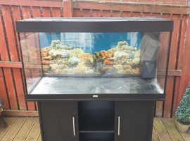 Juwel Rio 300 Tank £200