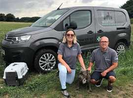 Woofters Premium Pet Transport