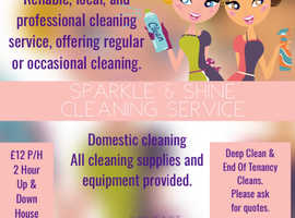 Sparkle & Shine cleaners