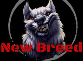 New Breed Security and Pet Dog Training