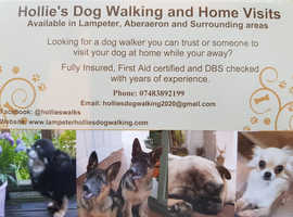 Dog Walking & Home Visits Services