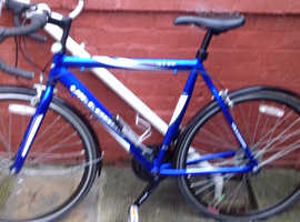 Vittesse bike mens Seaham  £95