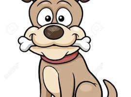 Scruffs professional dog walking service