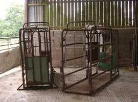 CATTLE CRUSHES FOR SALE