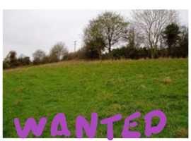 Farmland/ paddocks / land WANTED IN NORFOLK / SUFFOLK