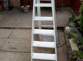 Decorators ladders