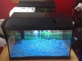 Fishtank(no fish)