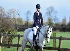 Professional Freelance rider available