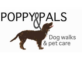 Professional Dog Walking and Pet Care