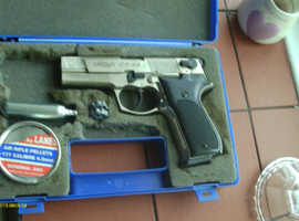 Walther in Scotland   Leisure & Hobbies For Sale - Freeads