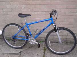 raleigh cyclone mountain bike