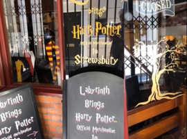 Labyrinth brings Harry Potter to Shrewsbury