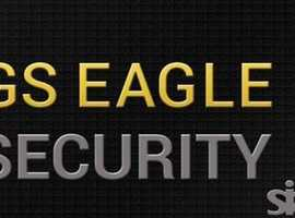 GS EAGLE SECURITY LTD