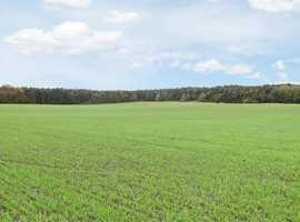 Farm / Smallholding for Sale Wingate, Co. Durham