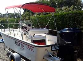 Boston whaler montauk 170