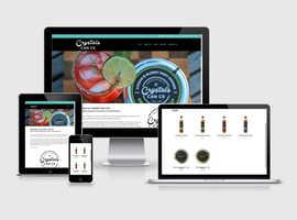 Professional, Affordable Website Design Services