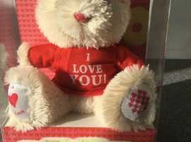 Valentine Bear with I LOVE YOU on it's top (Brand new)