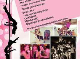 Pole Dancing Fitness classes (KT Wild's Vertical Fitness)
