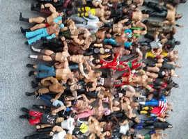 Wrestler Bundle