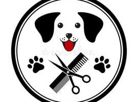Scallywags dog grooming