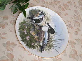 Waterfowl Wall Plates x 6