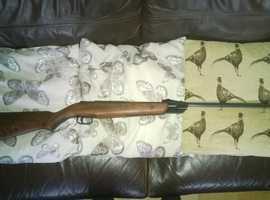 .22 webley & scott model falcon air rifle