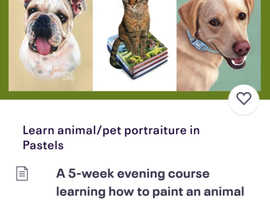 Learn animal and pet portraiture in Pastels